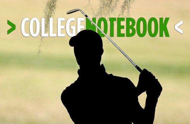Fourteen of the top 26 players from last year's Golfweek/Sagarin College Rankings are not playing college golf this season.