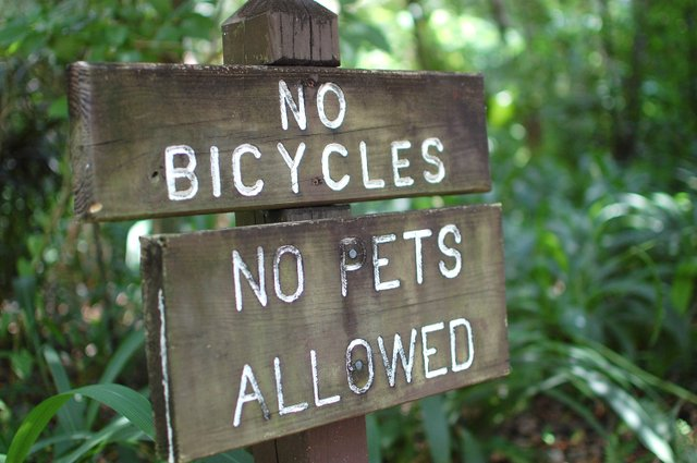 A sign in Mead Botanical Garden reminds citizens that dogs are not allowed in most areas of the city park.
