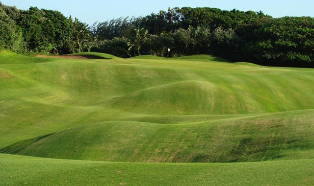 Distinctive fairway contours have wooed golfers for decades to South Africa to play Durban Country Club.