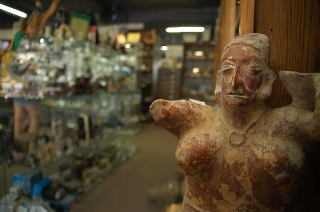 A more than 1,000 year-old statue stares back at patrons inside Winter Park's Ancient Artifacts & Treasures, which is packed wall to wall with rare archaeological artifacts ranging from decades to millions of years old, all for sale.