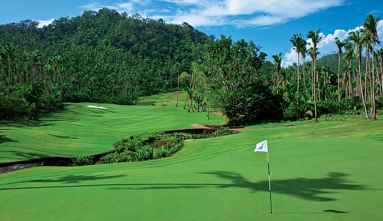 No. 2 at Laucala was carved from the forest.