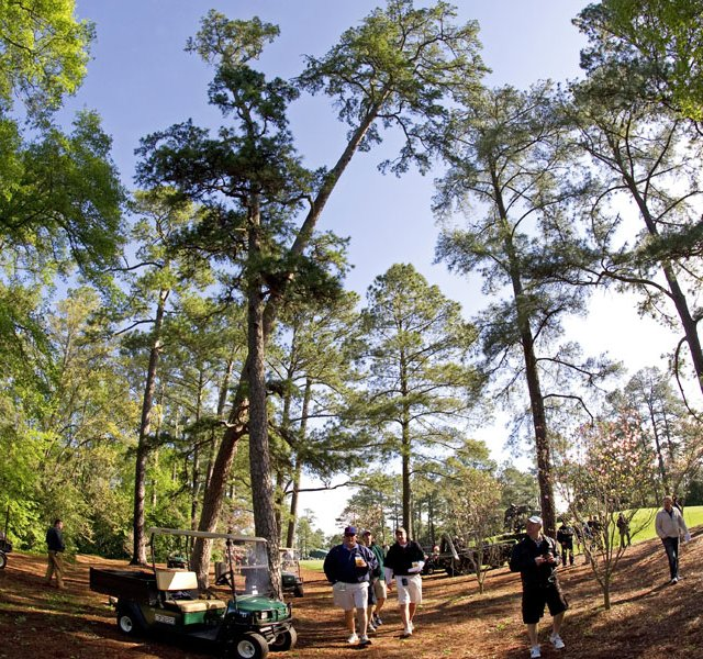 Golf fans walk near a large tree leaning at an angle near the third green during a practice round prior to the 2011 Masters. A storm that passed through the area overnight caused damage and delayed tee times on the course.