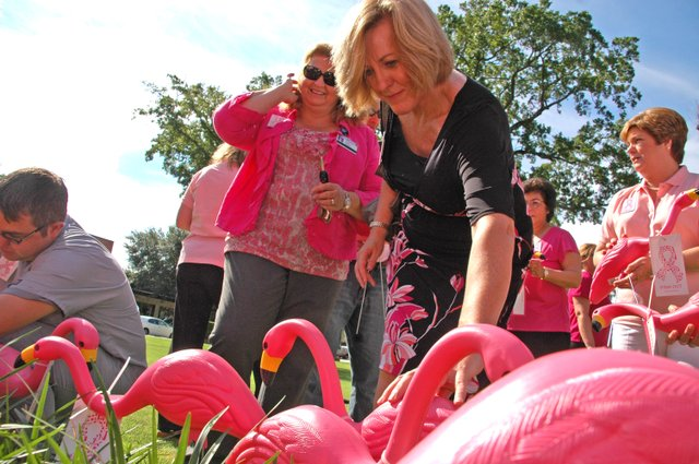 Winter Park Economic Development Director Dori Debord plants her flamingo. 