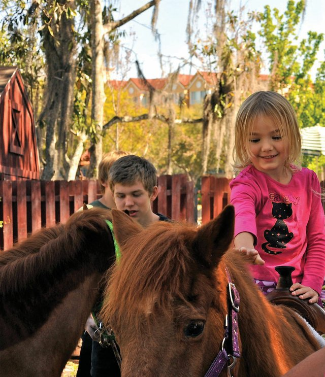 Crealde Family Fest will feature pony rides.