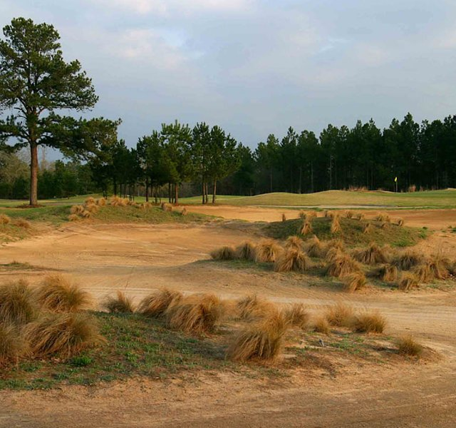 A waste area on No. 11, with the 13th green in the background at Pine Dunes.