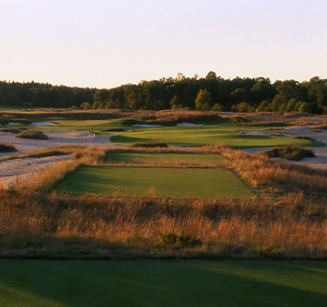 Boyne, the northern Michigan resort operator, will be booking rounds at Forest Dunes Golf Club through its golf packages as part of a partnership with the Roscommon, Mich., course.
