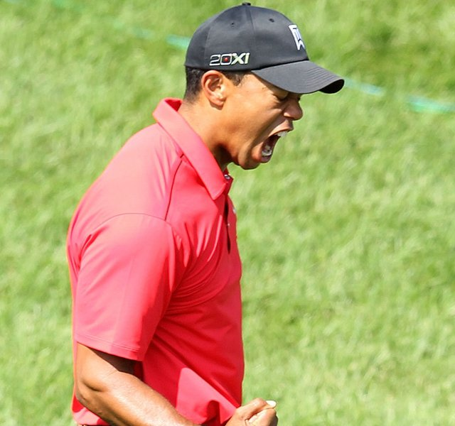 Tiger Woods celebrates after chipping in for birdie on the par 3 16th hole during the final round of the Memorial Tournament presented by Nationwide Insurance at Muirfield Village Golf Club on June 3, 2012 in Dublin, Ohio.