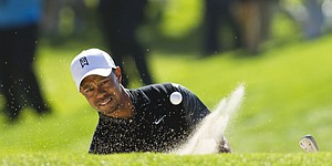 U.S. Open: A numerical look at the field