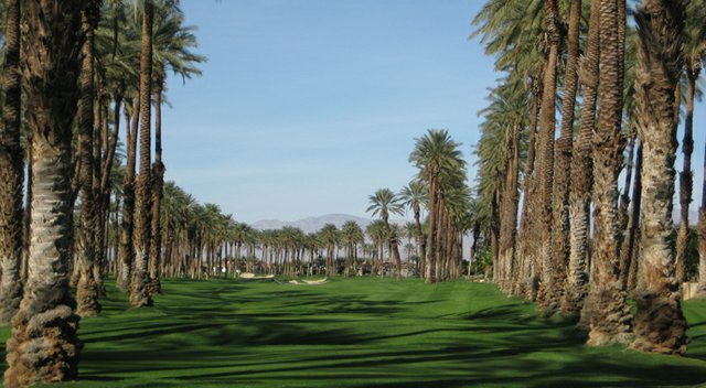 The par-5 14th hole at the Palms Golf Club in La Quinta, Calif.