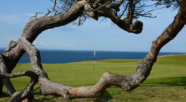 A view of the 11th from behind the green at Renaissance Club.