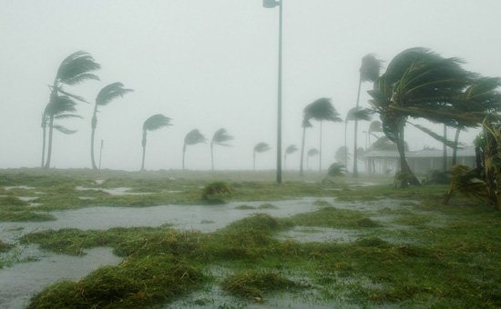 Hurricane Dennis batters palm trees and floods parts of Naval Air Station Key West's Truman Annex on July 9, 2005. The storm passed within 125 miles of the base, pushing winds in excess of 90 mph and dumping more than 7 inches of rain before moving north through the Gulf of Mexico.This season has seen no hurricanes yet.