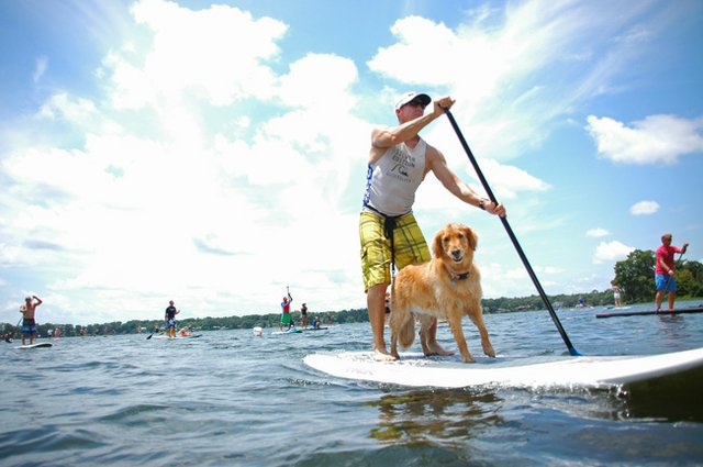 Too many paddleboards have made the city consider clamping down on lake users.