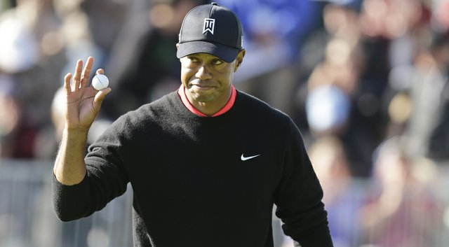 Tiger Woods will open his 2014 schedule at Torrey Pines, followed by the Dubai Desert Classic the following week.