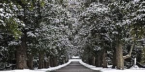 Augusta National flourishes in winter weather
