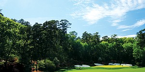 Iconic Augusta National ground shapes course design