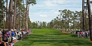 Augusta National's new look: A tree assessment