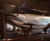 Schupak: Ozark rain delay spawns Nicklaus fish tales
