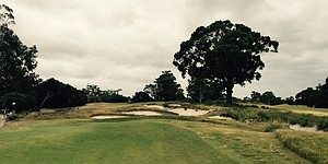 Rater's blog: Birdies and birdwatching at Kingston Heath