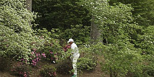 Masters champions made on back nine at Augusta National