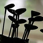 Explosive device prompts evacuation of California golf course