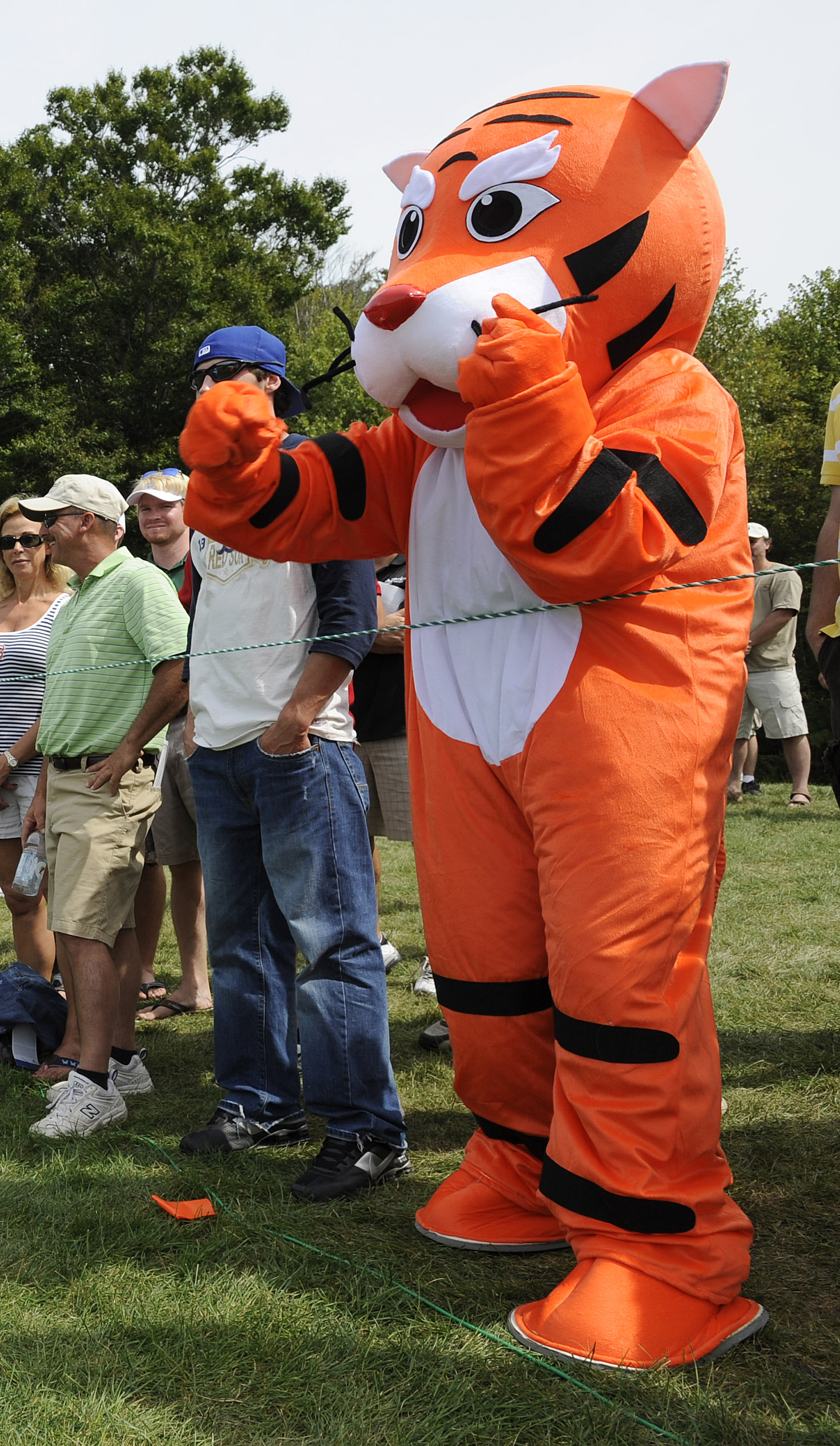 A fan dressed in a tiger outfit cheers on Tiger Woods on the eighth green during the final round of the Deutsche Bank Championship.
