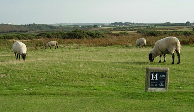 At Southerndown, a foursome waits its turn on the 14th tee.