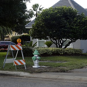 A new fire hydrant is seen in the front of Tiger Woods' home in the Isleworth community in Windermere, Fla., on Nov. 30.