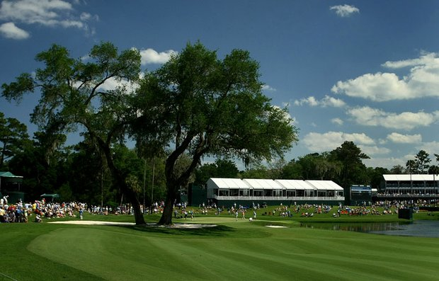 A large tree protects the 16th green at TPC Sawgrass.