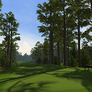 "Hole No. 11 at Augusta National as seen in the PS3 and XBox 360 versions of ""Tiger Woods 12: The Masters."""