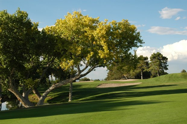 The University of New Mexico's Championship Golf Course