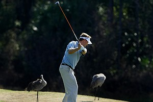 Two sandhill cranes stand nearby as Billy Hurley III hits a shot at No. 12. Hurley placed second at this event.