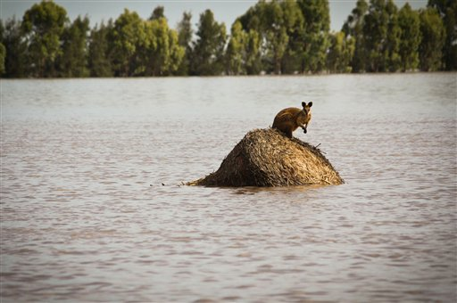 Floods have terrorized the Australian state of Queensland.