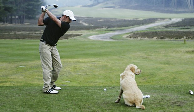 Paul McGinley and his dog Febe at Sunningdale Golf Club in Surrey, England (2003).