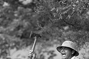 Lee Trevino wears a marshal's hat as he plays in the rough with a hatchet and rubber snake during a practice round before the U.S. Open starts at the Merion Golf Club in Ardmore, Pa. on June 16, 1971.
