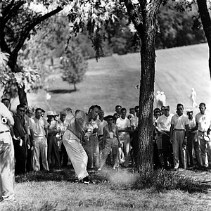 Foliage hides Lionel Hebert, of Lafayette, La, at the PGA tournament Friday, July 19, 1957 in Dayton, Ohio as he shoots out from base of tree onto second fairway. He was battling Cloude Harmon after ousting Mike Souehak in morning round.