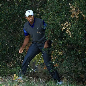 Tiger Woods watches a shot from the trees on the fifth hole during the second round of the Chevron World Challenge.