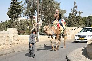 Morgan Pressel on a camel ride.