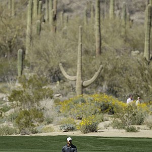 Tiger Woods walks to his ball on the seventh fairway while playing Nick Watney during the Match Play Championship.