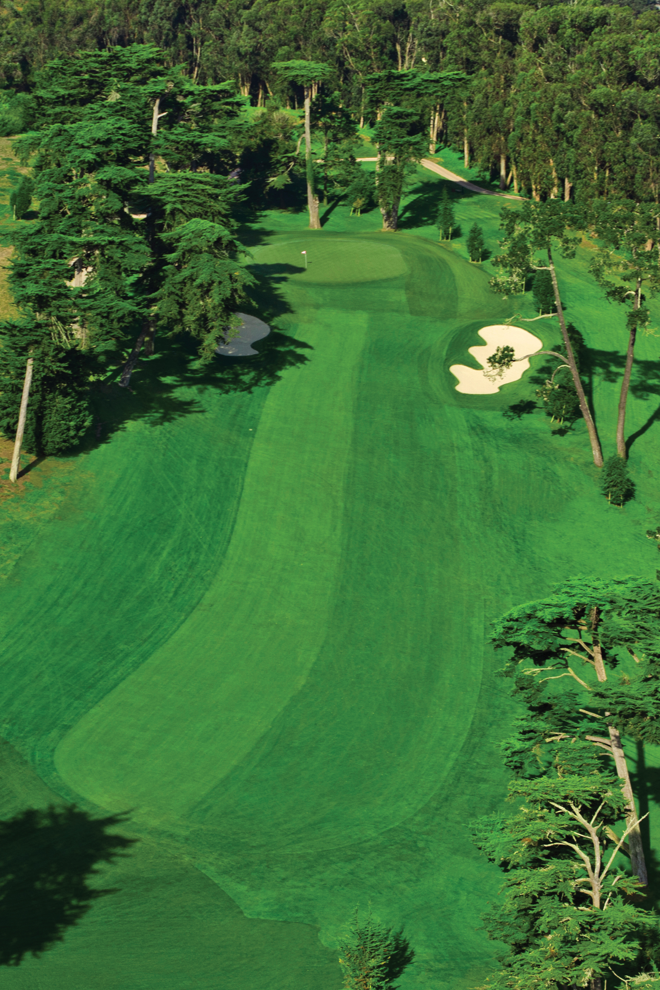 The reverse-camber fairway of No. 4 on Olympic's Lake Course