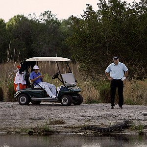 Hank Kuehne and Rickie Fowler check out an alligator on the banks of one of the holes at The Medalist in Hobe Sound,FL.