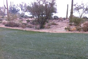 The snow/rain/hail just starting to fall during the first round of matches at the WGC-Accenture Match Play Championship.