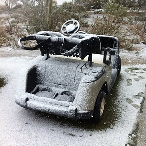 Golf cart or snowmobile?