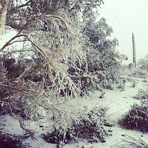 Snow in the desert.