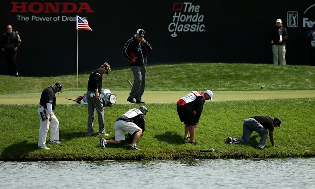 Tiger Woods and his playing partner David Lynn along with their caddies search for Woods' ball at No. 17 during the Honda Classic on Saturday.