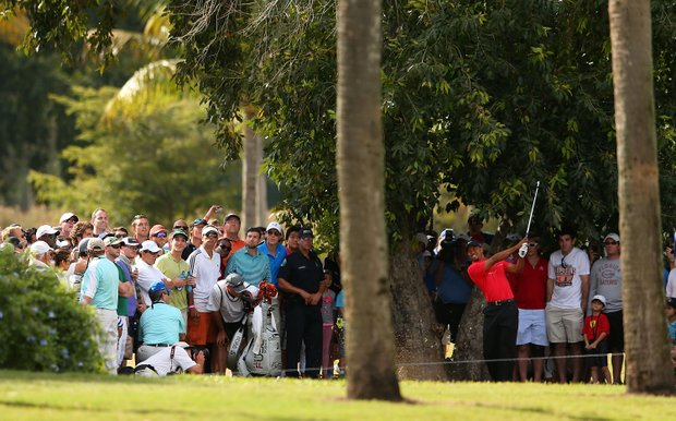 Tiger Woods watches a shot on the eighth hole during the final round of the WGC-Cadillac Championship.