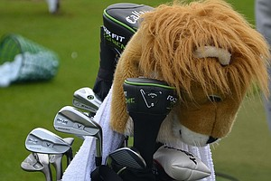 Ernie Els' Callaway RAZR X Muscleback irons are watched over by his lion driver headcover.