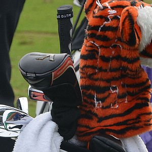 Tiger Woods headcover stands guard over his Nike VR Pro Blades.