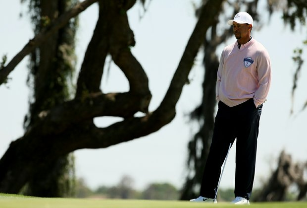 Tiger Woods waits to putt at No. 9 during the 2013 Tavistock Cup at Isleworth Country Club.