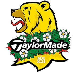 In this picture: 2013 logo