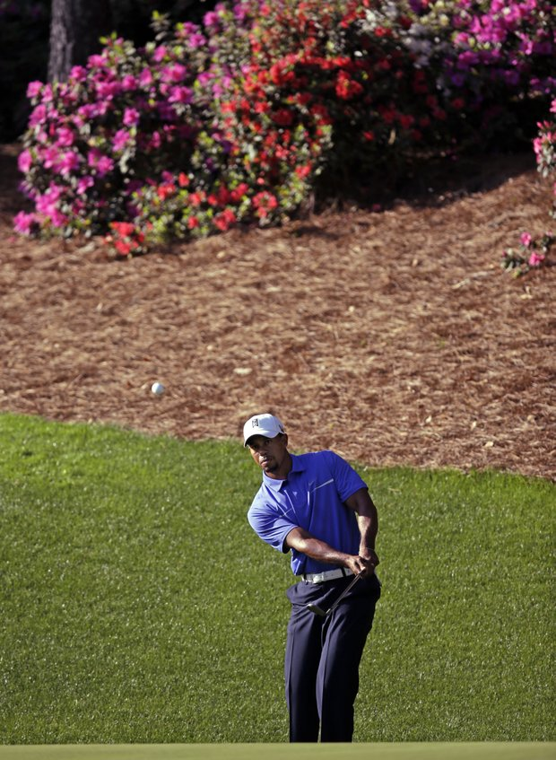 Tiger Woods chips to the 13th green during a practice round for the Masters at Augusta National.